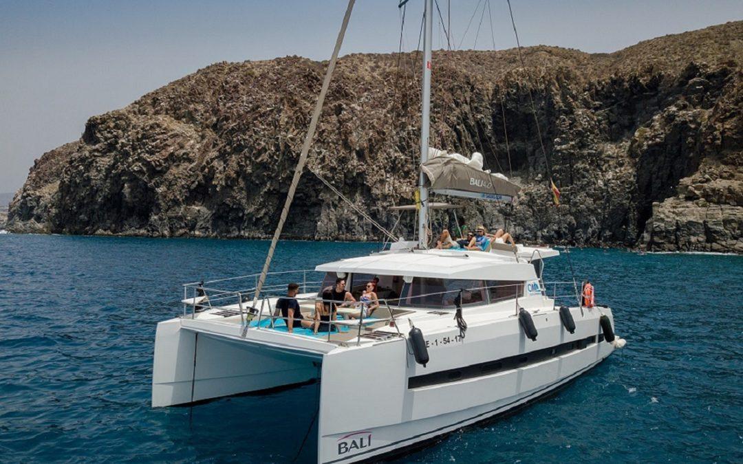 InSail Catamaran